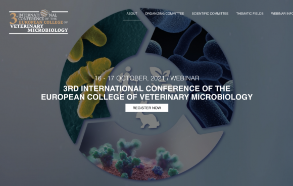 3rd International Conference