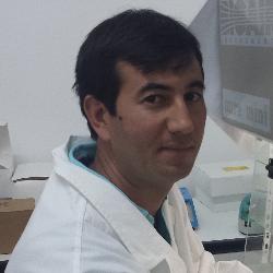 Prof Nicola Decaro