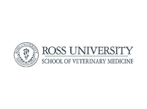 Job Offer: Assistant, Associate Professor – Veterinary Bacteriology