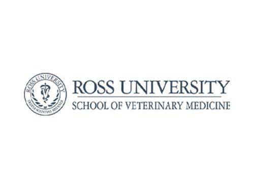 Job Offer: Assistant, Associate Professor – Veterinary Bacteriology